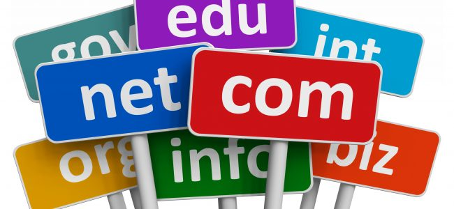 The Process of Registering a Domain: A Few Things to Note