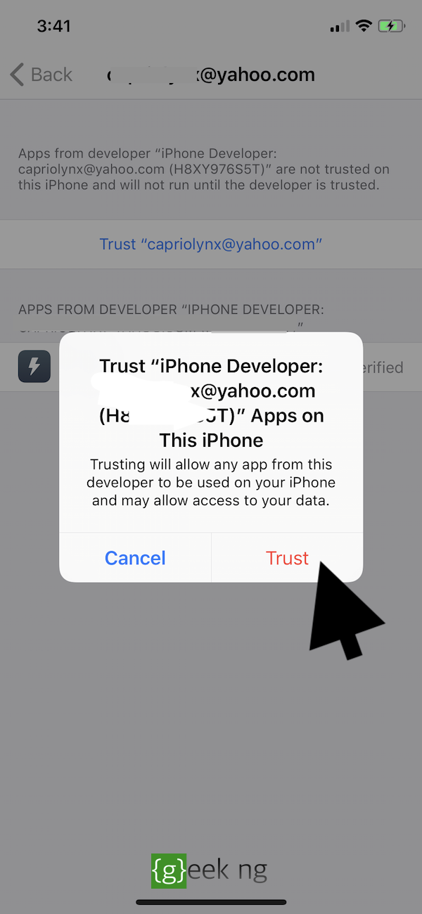 trust developer ios settings