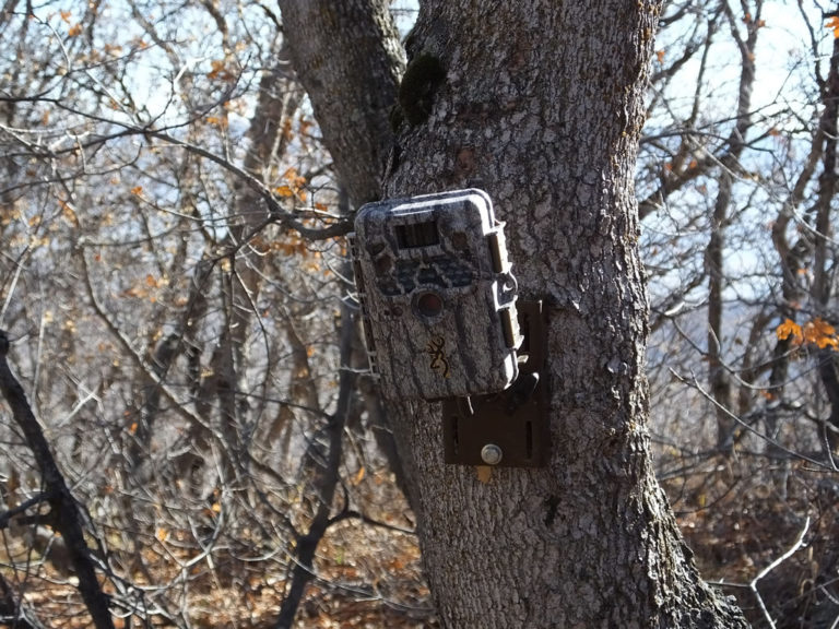 wireless game camera